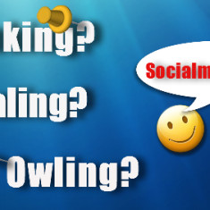 Was ist Planking, Whaling oder Owling?